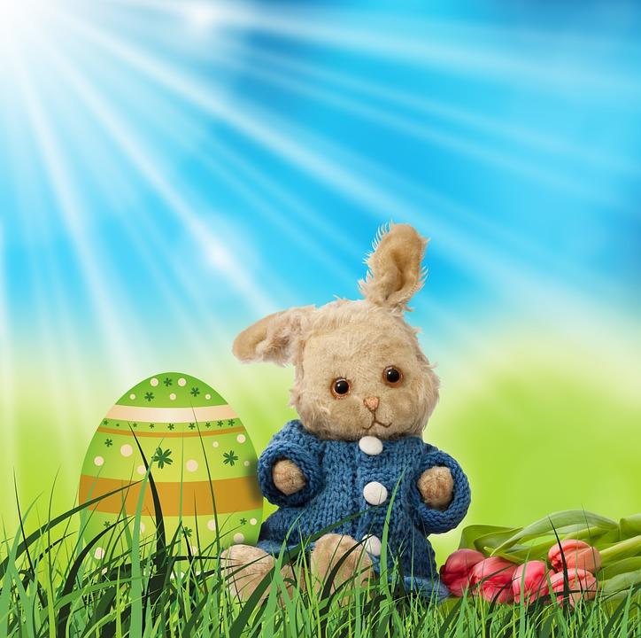 bunny-9